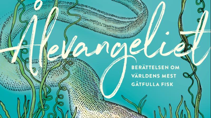 Tecknat omslag boken Åvangeliet, turkosblå bakgrund, sjögräs och en slingrande grå ål