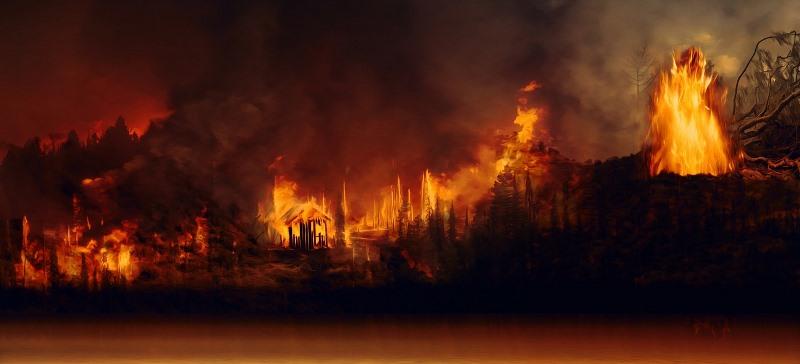 Kraftig brand i regnskog, med stora eldslågor som flammar upp mot tät svart rök som täcker himlen.