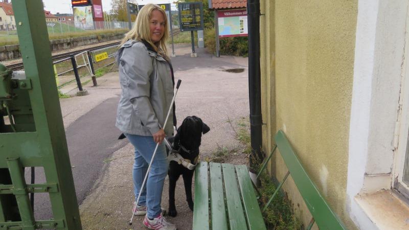 Blond kvinna tränar blivande ledarhund i att söka bänk.