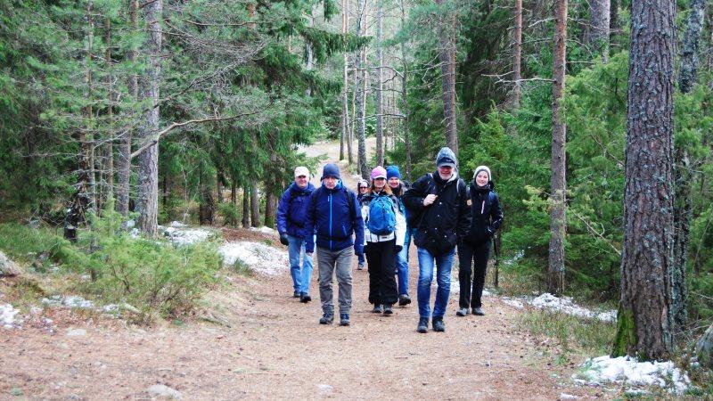 En grupp människor vandrar på en skogsväg.