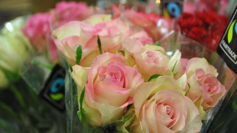 Buketter med rosor i olika färger. Närmast kameran rosa och vita.
