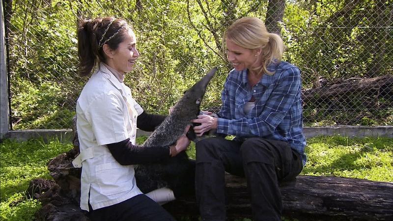 Bild på blond programledare och myrslok, från tv-programmet Djursjukhuset.