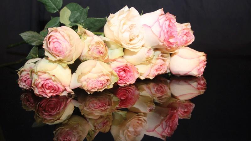 Bild på rosor.