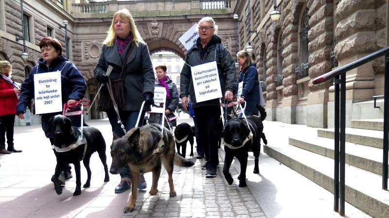 Demonstrationståg av ledarhundsförare