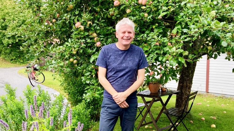 Leende gråhårig man i blå T-tröja står under äppelträd ( sommar)