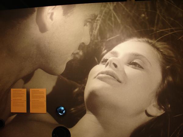 """Två ansikten i kärleksscen från´filmen """"Hon dansade en sommar""""."""